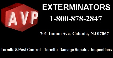 AVP Exterminators: 1-800-878-2847; 701  Inman Ave,  Colonia,  NJ 07067; Termite and Pest Control, Termite Damage Repairs